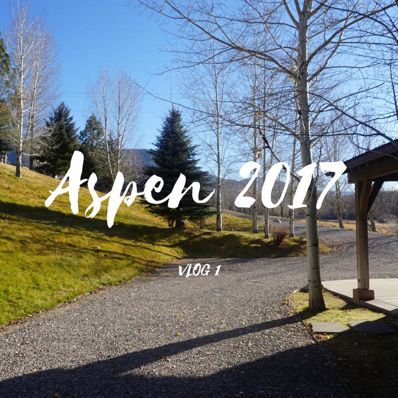My Aspen Experience